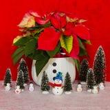 Poinsettia dans un panier blanc avec le bonhomme de neige et les arbres Photographie stock libre de droits