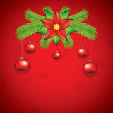 Poinsettia decoration Stock Images