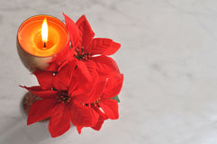 Poinsettia di natale immagini stock libere da diritti