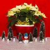 Poinsettia in einem roten Korb mit Schneemann und Bäumen Stockfotografie