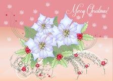 Poinsettia et baie blanches de carte Image libre de droits