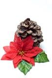 Poinsettia falso con il vecchio cono del pino Immagini Stock Libere da Diritti