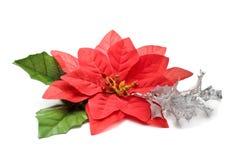 Poinsettia falso con la filiale d'argento Immagini Stock