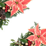 Poinsettia Floral Border Royalty Free Stock Image