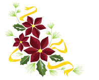 Poinsettia flourish. A illustration of poinsettias, holly, pine, and gold ribbon, perfect for a holiday message or note royalty free illustration