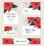 Poinsettia flower background for invitation  card Stock Photo