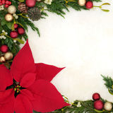 Poinsettia Flower Border Royalty Free Stock Photography