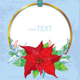 Poinsettia flower or Christmas Star with round frame in gold on the blue background. Traditional Christmas symbol. Stock Photo