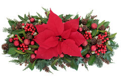 Poinsettia Flower Display. Thanksgiving and christmas poinsettia flower display with red baubles, holly, winter greenery and red bauble decorations over white Royalty Free Stock Photos