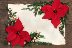 Poinsettia Flowers Border. Thanksgiving and christmas poinsettia flower border on parchment paper over old oak background Royalty Free Stock Photography