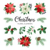 Poinsettia Flowers and Christmas Floral Elements in Watercolor Style vector. stock illustration