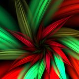 Poinsettia Fractal Stock Photos