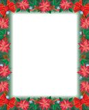Poinsettia Frame Royalty Free Stock Photography
