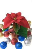 Poinsettia and glass balls Stock Image
