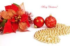 Poinsettia and glass balls. On white background Royalty Free Stock Photo