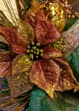 Poinsettia gold Royalty Free Stock Photography