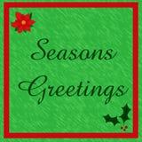 Poinsettia greetings Stock Photos