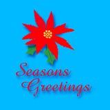 Poinsettia greetings Royalty Free Stock Photos