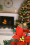 Poinsettia holiday vertical upclose. Shot of a poinsettia holiday vertical upclose Royalty Free Stock Photos
