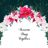 Poinsettia mix vector design circle frame Royalty Free Stock Images