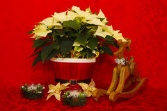 Poinsettia in a Red Basket with Candles and Reindeer Royalty Free Stock Photography