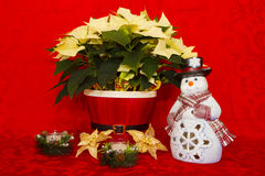 Poinsettia in a Red Basket with Candles and Snowman Royalty Free Stock Images