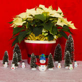 Poinsettia in a Red Basket with snowman and trees Stock Photography