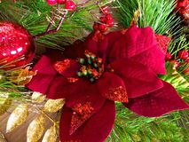 Poinsettia red Christmas. Red poinsettia Christmas decoration royalty free stock photo