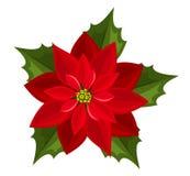 Poinsettia rojo. Ejemplo del vector. libre illustration
