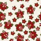 Poinsettia seamless wallpaper Stock Photography