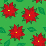 Poinsettia Swatch Stock Image