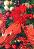 Poinsettia Tree. A poinsettia in full bloom used to decorate a festive tree stock photo