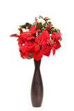 Poinsettia vase Stock Photography