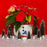 Poinsettia in a White Basket with snowman and trees Royalty Free Stock Photography