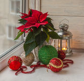 Poinsettia  in the window on the eve of Advent Royalty Free Stock Photo