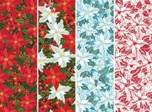 Poinsettiareeks Kerstmis naadloze grens, banner Stock Afbeelding