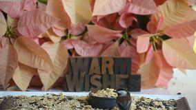 Poinsettias with chickadees and warm wishes stock video footage
