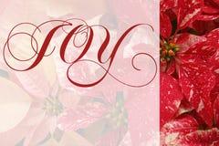 Poinsettias de la Navidad con palabra de la alegría Imágenes de archivo libres de regalías