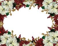 Poinsettias del blanco de la frontera de la Navidad Imagen de archivo