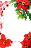 Poinsettias frame Stock Image