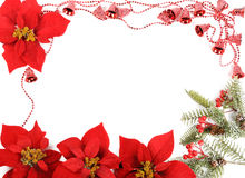 Poinsettias frame Royalty Free Stock Images