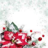 Poinsétia, quinquilharias vermelhas e árvore de Natal, espaço do texto Imagens de Stock