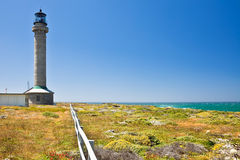 Point Arena Lighthouse. Erected in 1870, destroyed by the 1906 earthquake, and rebuilt the following year, it was the first lighthouse to be made of steel and Royalty Free Stock Image