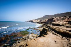 Free Point Cabrillo Tide Pools, Seaweed And Rocks In San Diego Along The Shores Of The Pacific Ocean Royalty Free Stock Images - 135124279