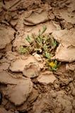Point d'eau sec Images libres de droits