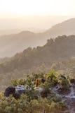 Point d'observation de paysage de montagne de début de la matinée avec le brouillard chez Umphang Province de Mae Hong Son, Thaïl Photos stock