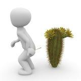 Point de cactus Photos stock
