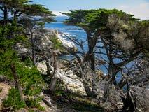 Point de Cypress, Pebble Beach CA Images stock