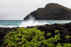 Point de Makapuu images stock