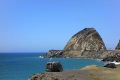 Point de négligence Mugu, CA de mouette Photo stock